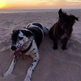 Charlie & Pippa